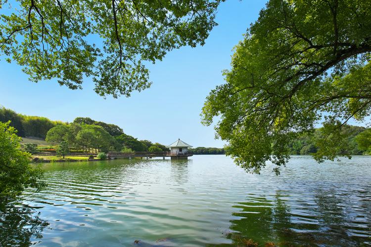 10山田池公園